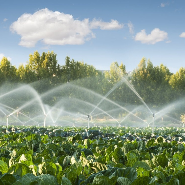 Irrigation water treatment